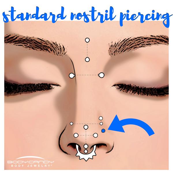 Encyclopedia Of Body Piercings Standard Nostril Nose Piercing