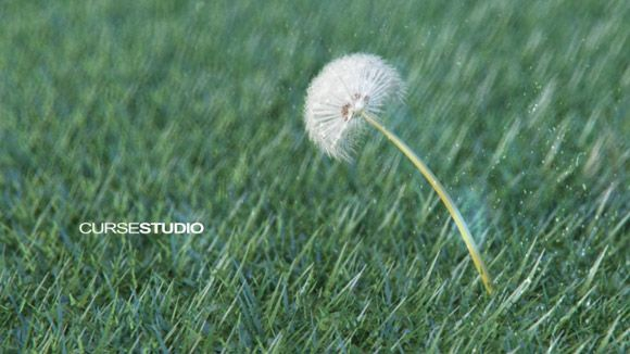 Cinema 4D - Modeling and Texturing a Dandelion Tutorial
