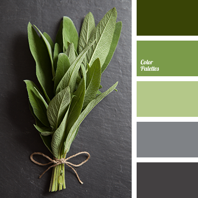 Color Palette 2074 Quiet In Which Diffe Shades Of Green A Deep Dark Gr And Le Blend Harmoniously With The Soothing Wet