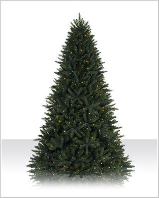 9 Ft Sophia Springs Spruce Spruce Christmas Tree Pre Lit Christmas Tree Christmas Tree