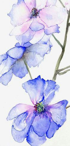 Suluboya Cicek Calismasi Watercolor Watercolor Flowers Art Painting