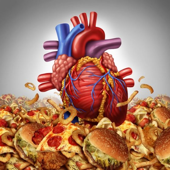 The 7 Best Foods for Your Heart