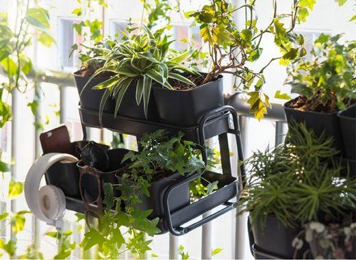 Vous rêvez dun balcon de verdure sans avoir à percer les murs accrochez