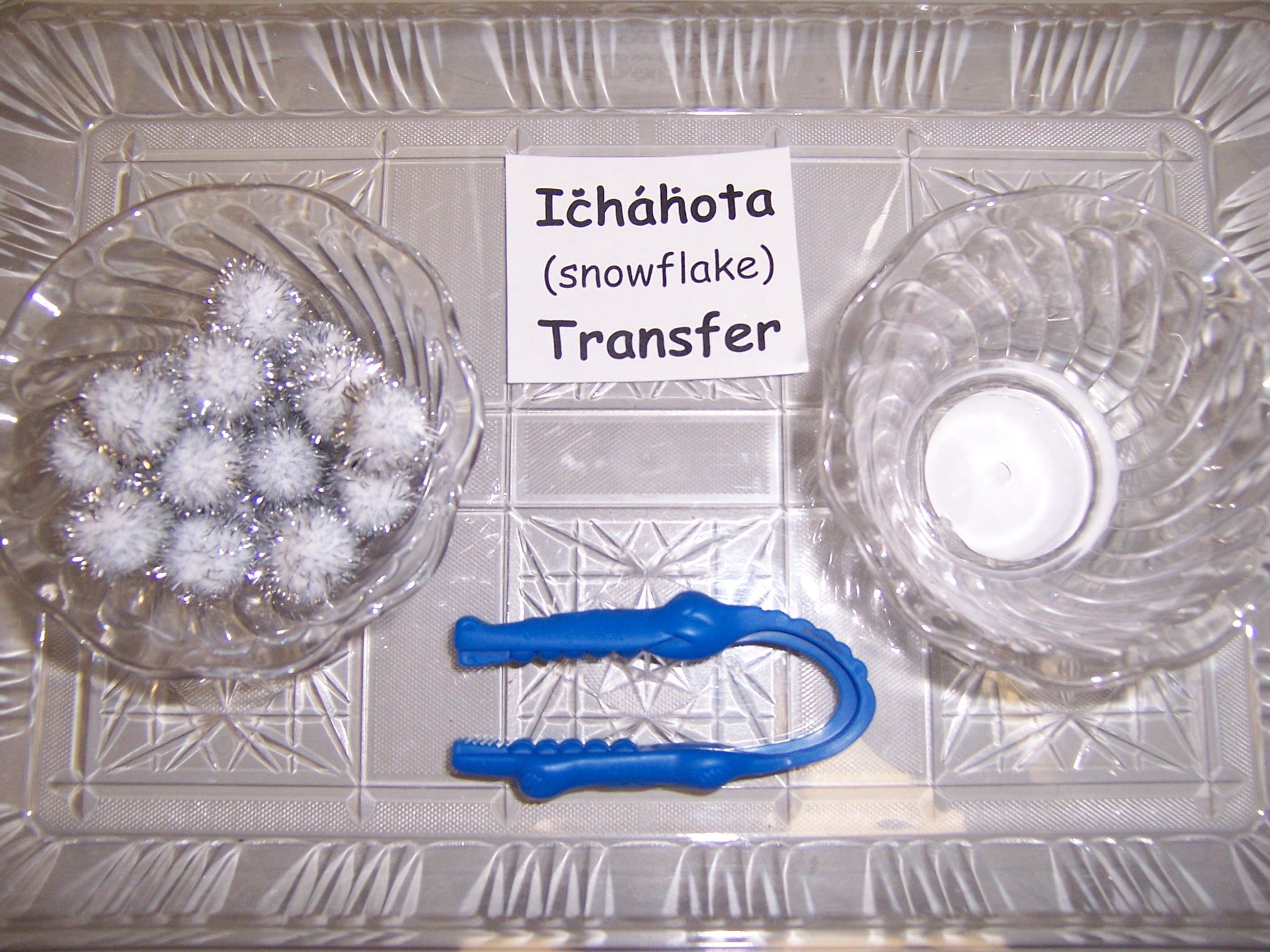 Ichahota Snowflake Transfer Fine Motor Tray