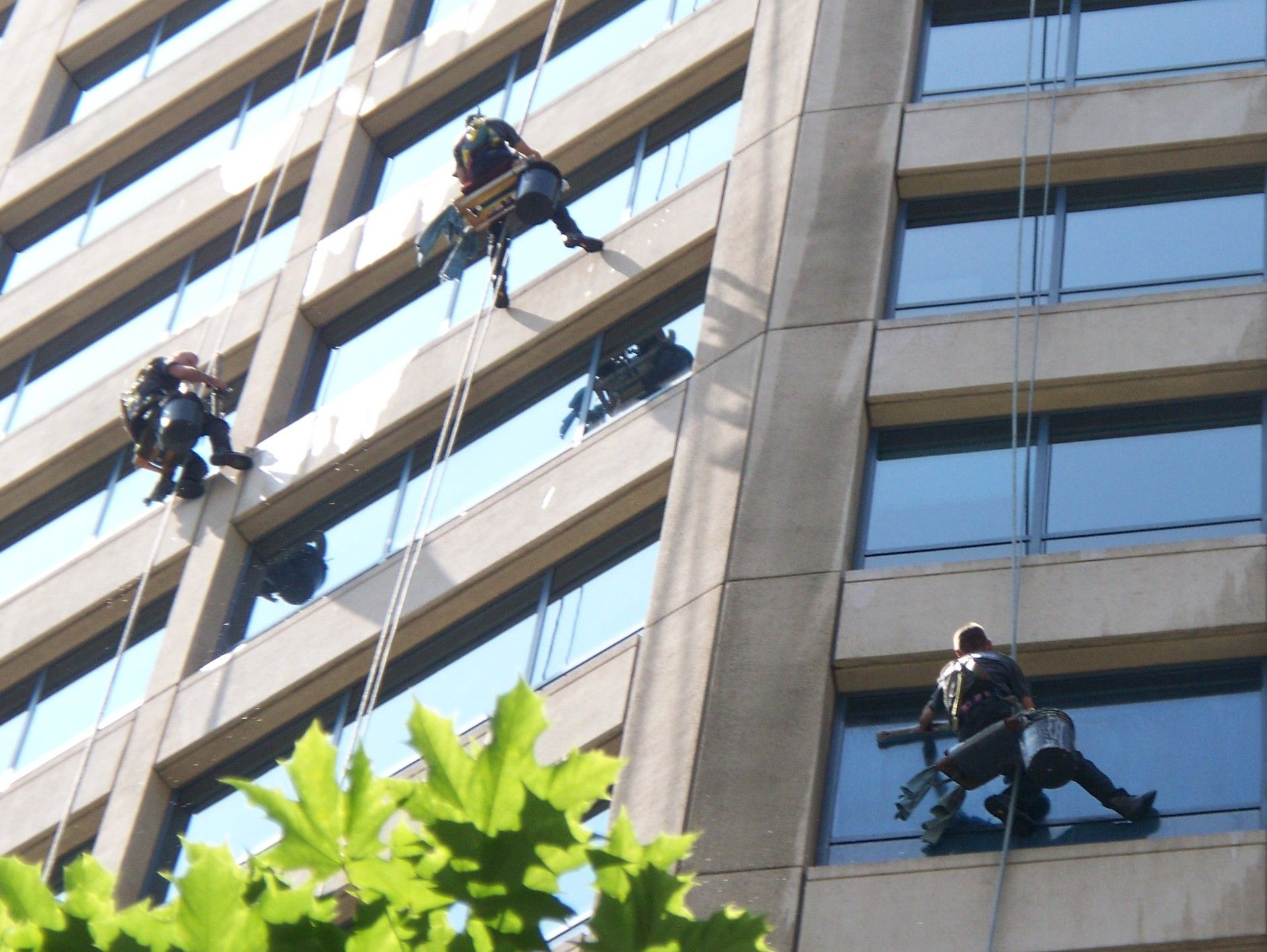 The Company Professionals Use Technically Advanced Equipments For Window Cleaning  Services That Ensures Best Results.
