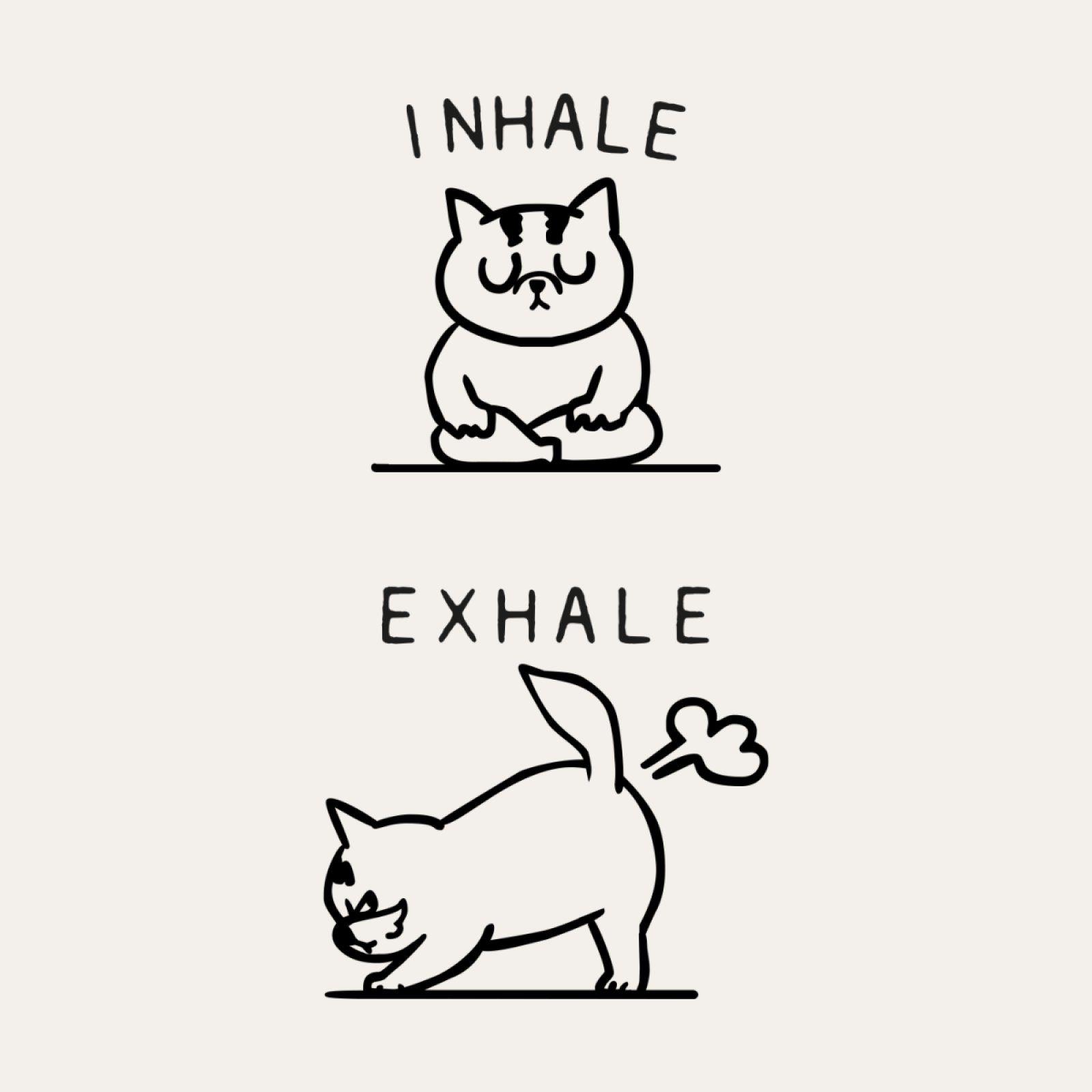 Inhale Exhale Cat In 2021 Cat Illustration Cat Art Art Drawings Simple