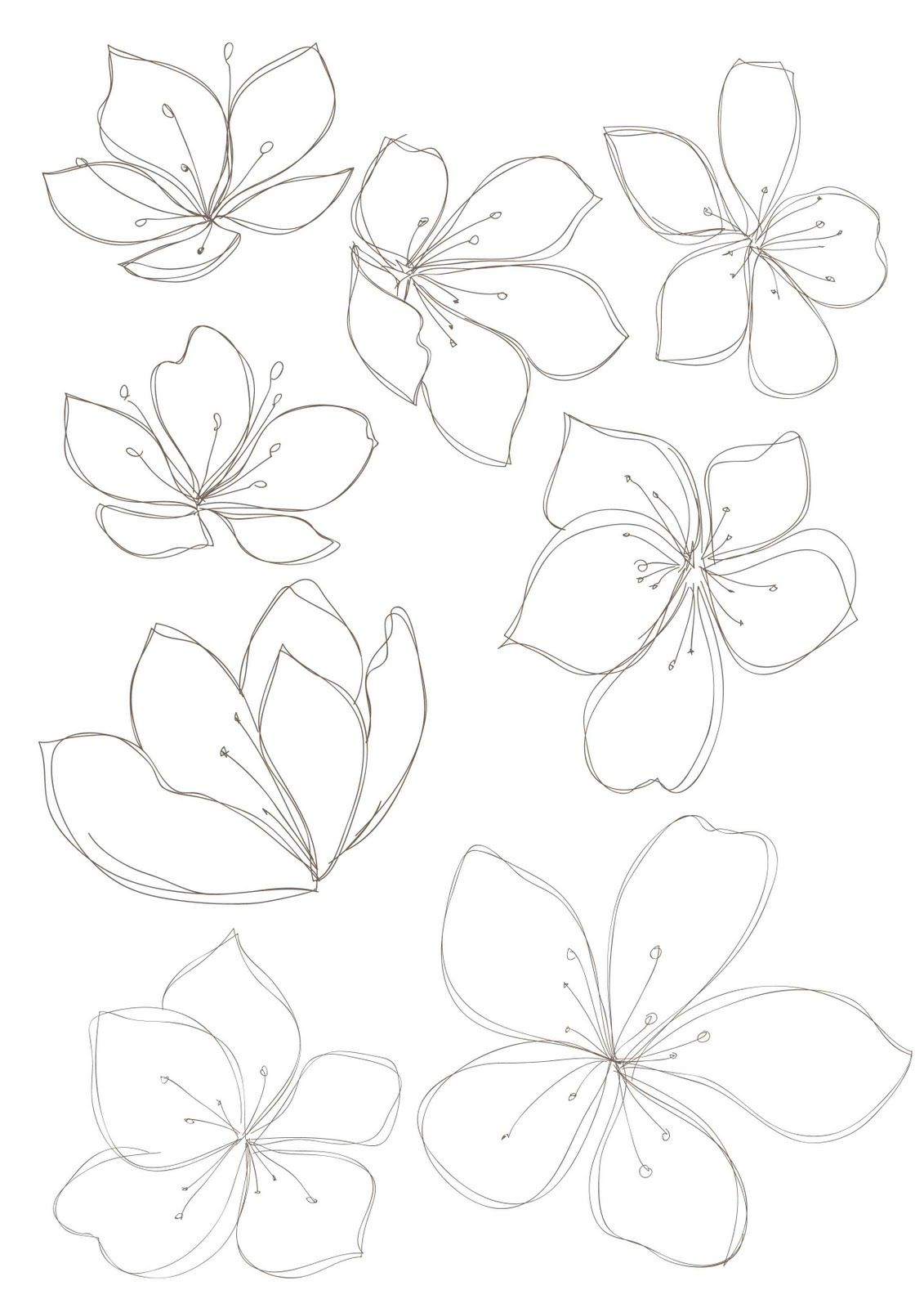 Line Art Flowers And Plants : Bobbie print floral drawings flowers pinterest