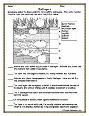 Worksheets Soil Worksheets 1000 images about ess on pinterest food chains worksheets and 7th grade science