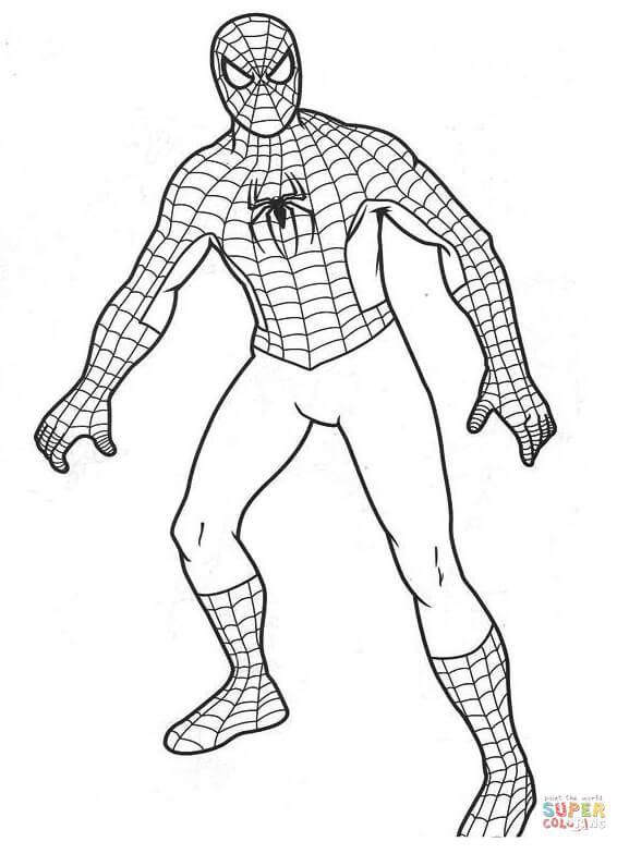 Spiderman Super Coloring Hombre Arana Para Pintar Spiderman