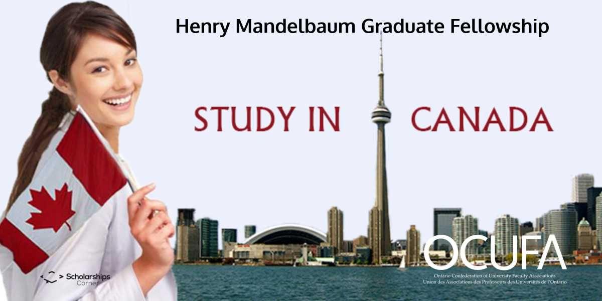 The Henry Mandelbaum Gradaute Fellowship Award 2018 is