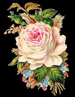 Rosas De Veronica Vintage Roses Rosas Vintage Png Flores Pintadas Rosas Vintage Estampas Florais Vintage