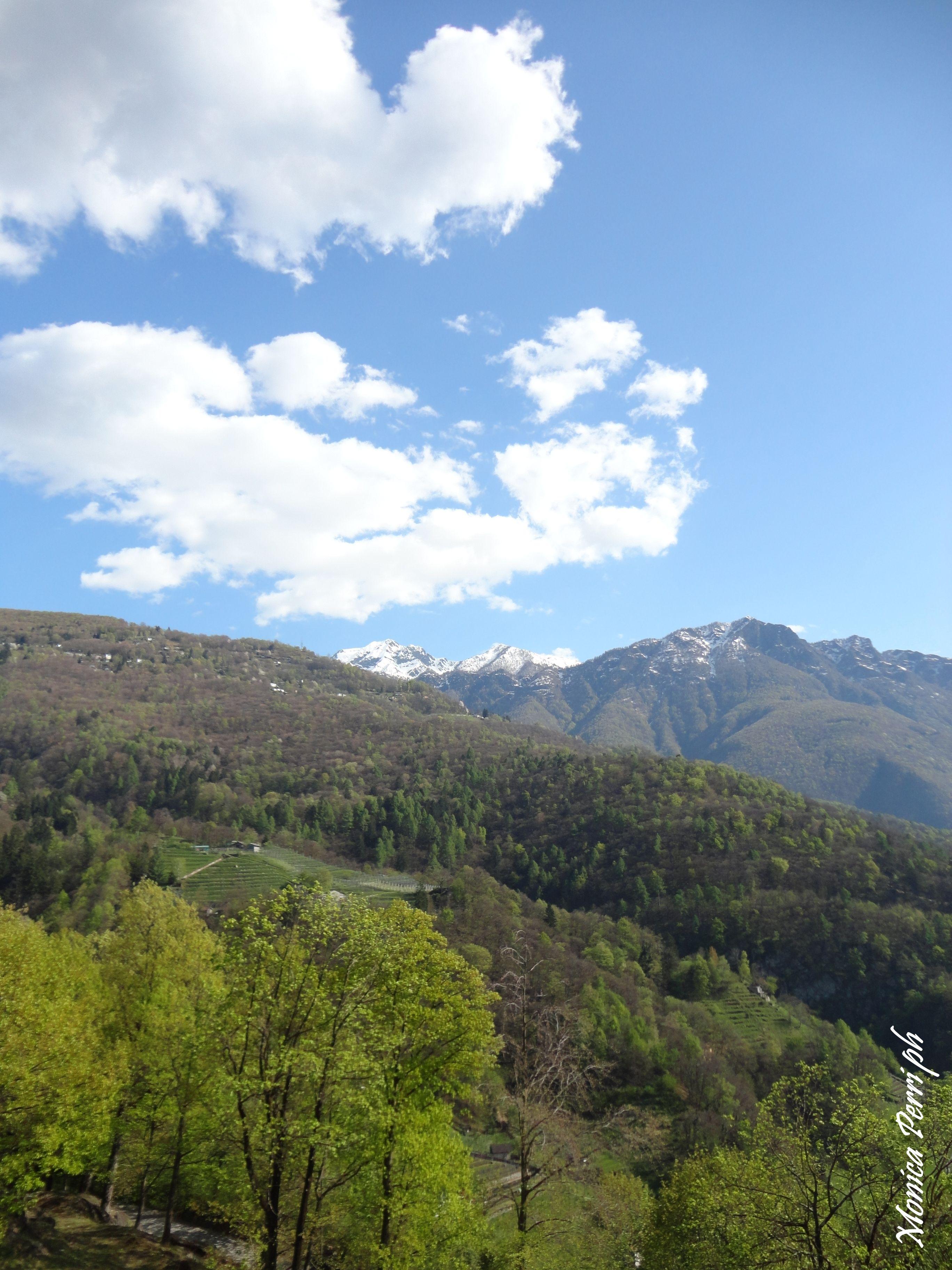 Bellinzona - CH