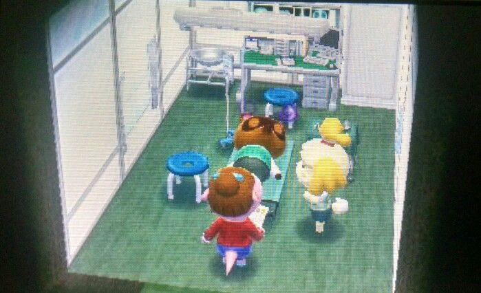 News Former Mayor Of Johto Now Happy Home Academy Stabs Tom Nook He Is In The Hospital Probably Wont Live