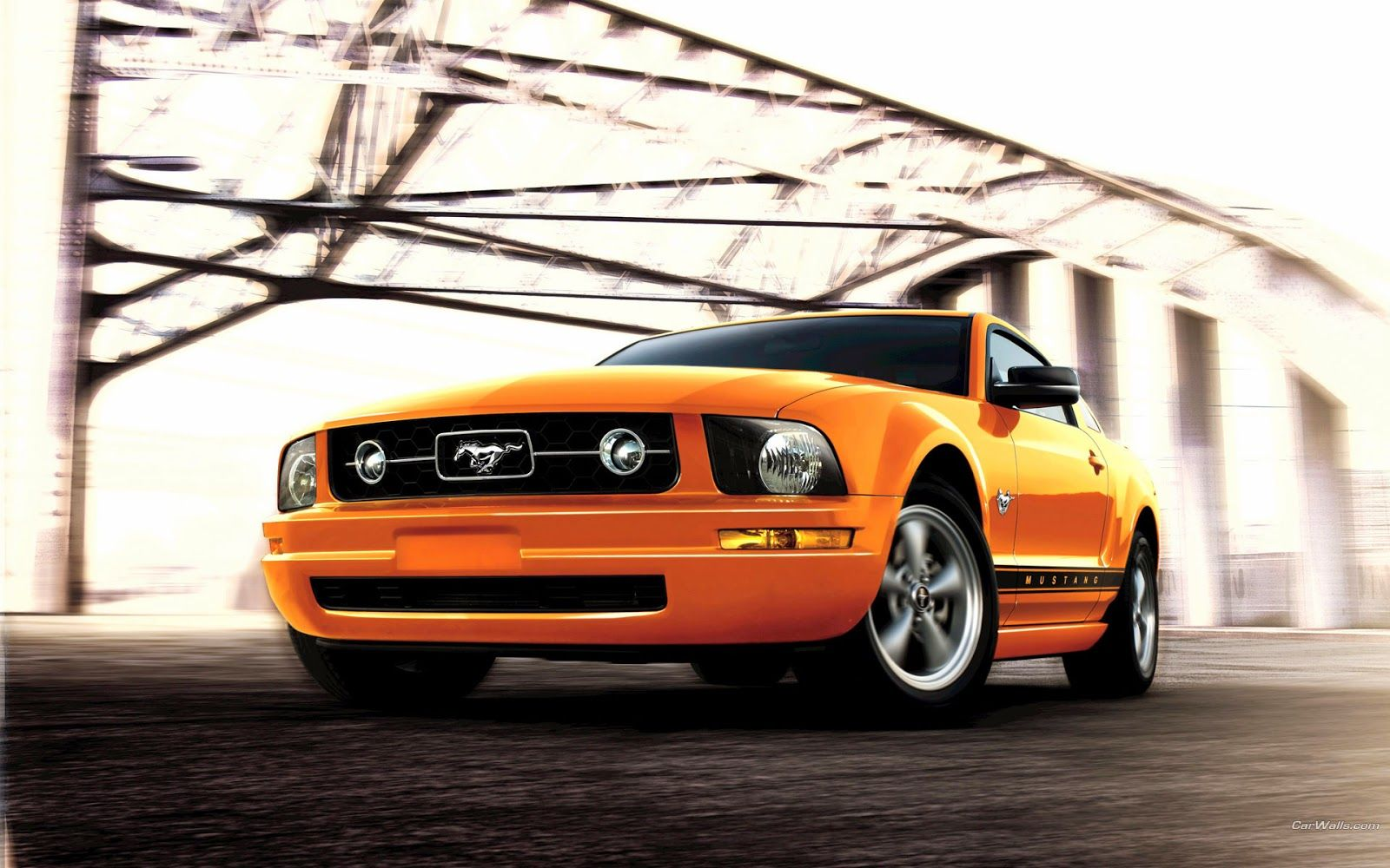 Ford Mustang Yellow Picture Hd Pictures Ford Mustang Mustang Hd Car Wallpapers