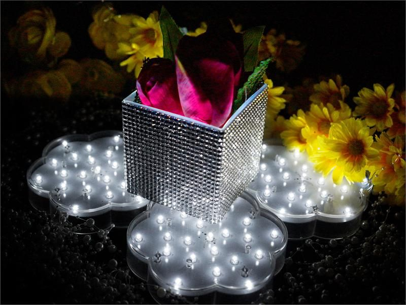 4 x Fairy Manor LED Base Lights White | eFavorMart