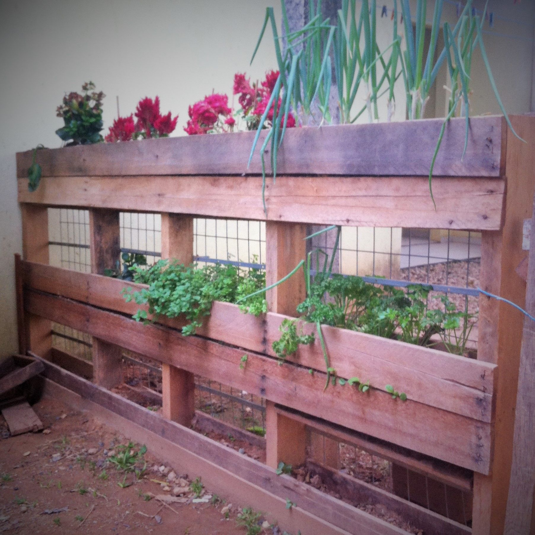 Vertical Herb Garden With A Pallet