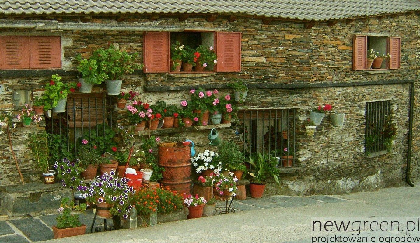Taras W Stylu Poludniowym Szukaj W Google Patio Garden Flowers