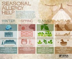 Do #allergies get to you? Check out these tips!