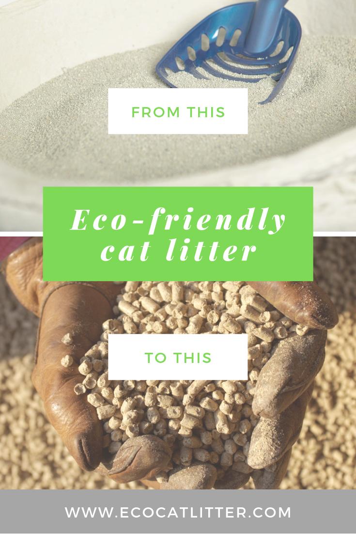 EcoFriendly Cat Litter Cat litter, Natural cat litter
