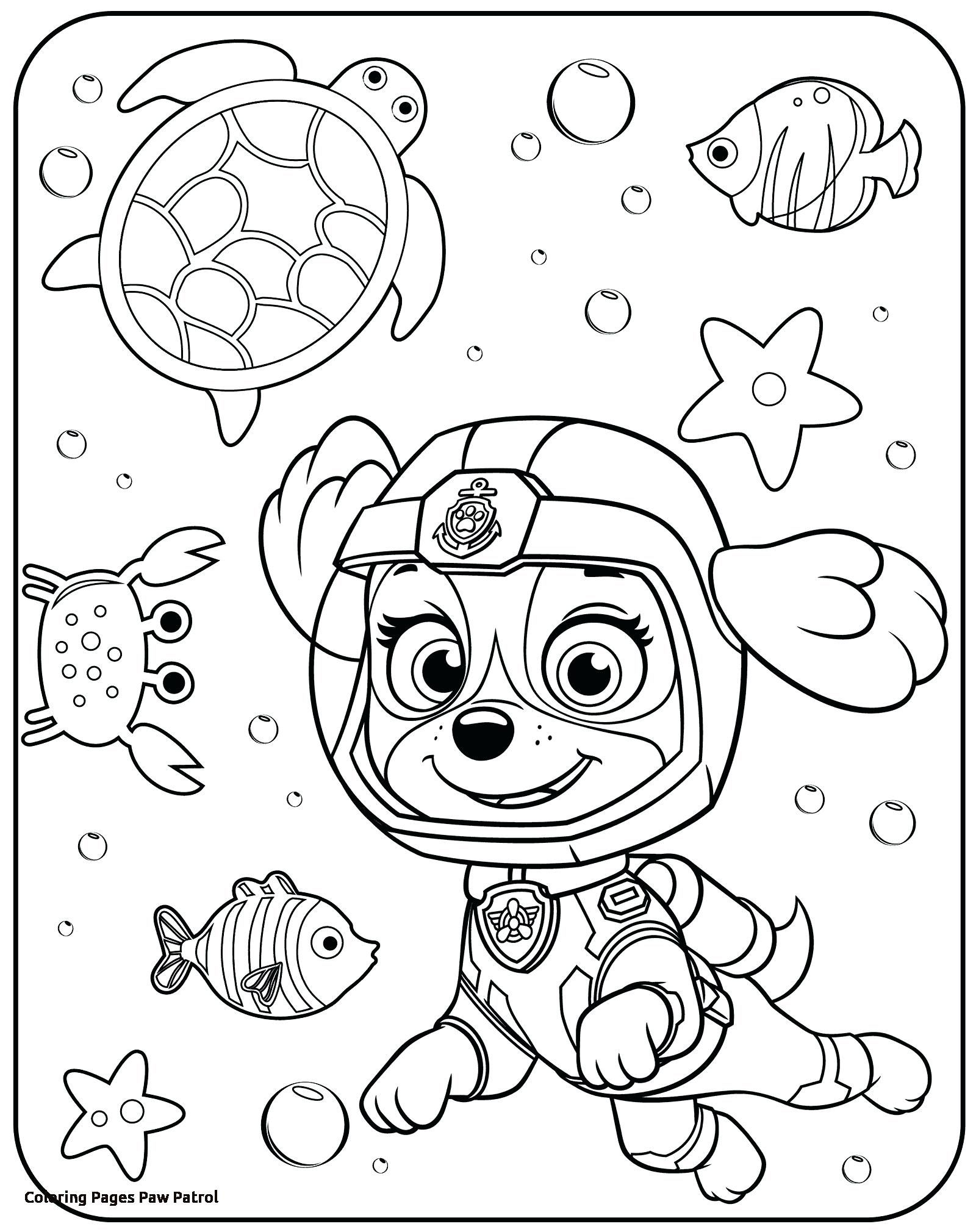 Pin By Alyssa Ethridge On Coloring Pages For James Paw Patrol