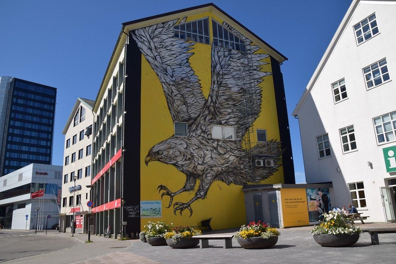Slik ble Bodø kjent som havørnbyen