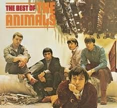 The Animals2