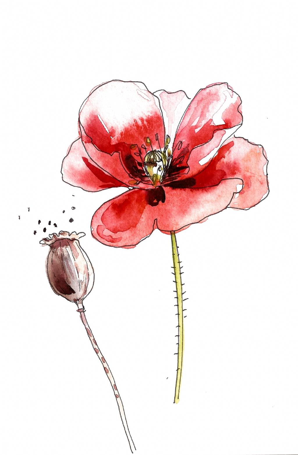 Pin Auf Deko Blumen