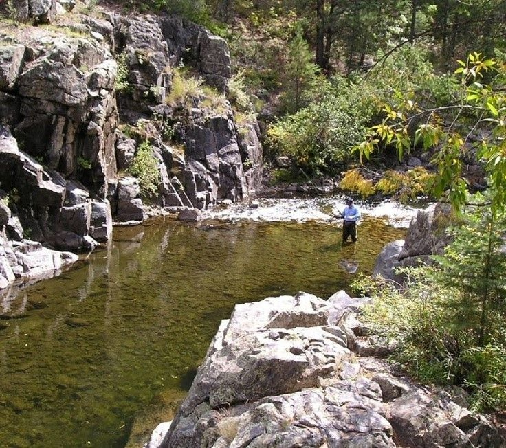 Pecos River New Mexico Fishing Spots On This Site Pecos River Mexico New Mexico