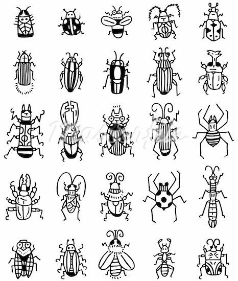 insects line drawing pencil then pen paint whole page with white