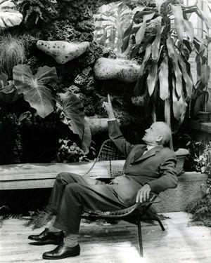 Pietro Porcinai - paesaggista e architetto di giardini - Ritratto a ...