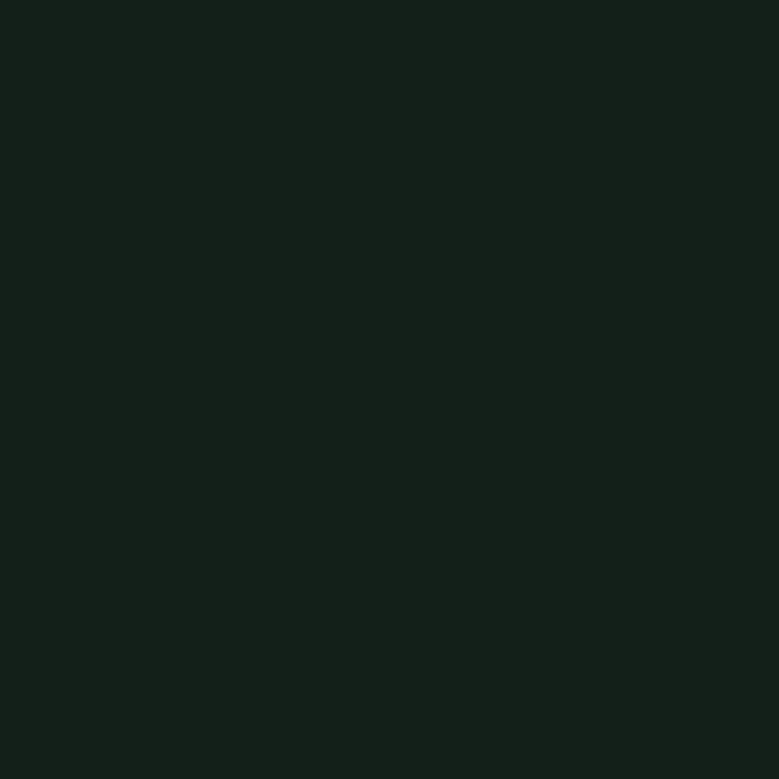 Buy Little Greene Paint Co. Intelligent Matt Emulsion, Obsidian Green (216), 2.5L Online at johnlewis.com