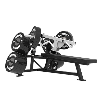 Plate Loaded Dynamic Fitness Strength Multi Gym Fitness Gym Workouts
