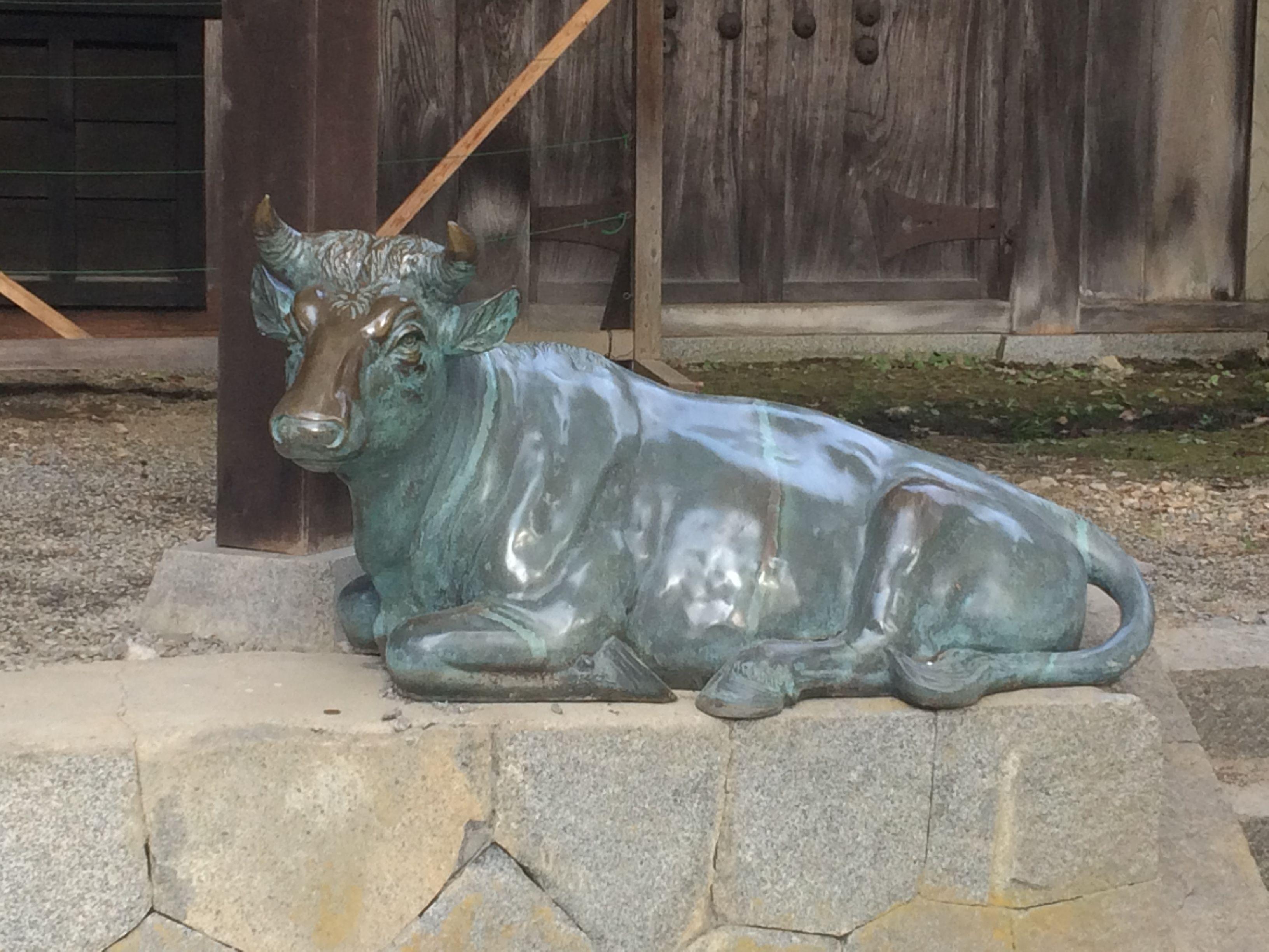 通常なら仁王門の前に対で置かれている牛の像ですが、台座の修理中なのか一体は参道の脇に鎮座していました。