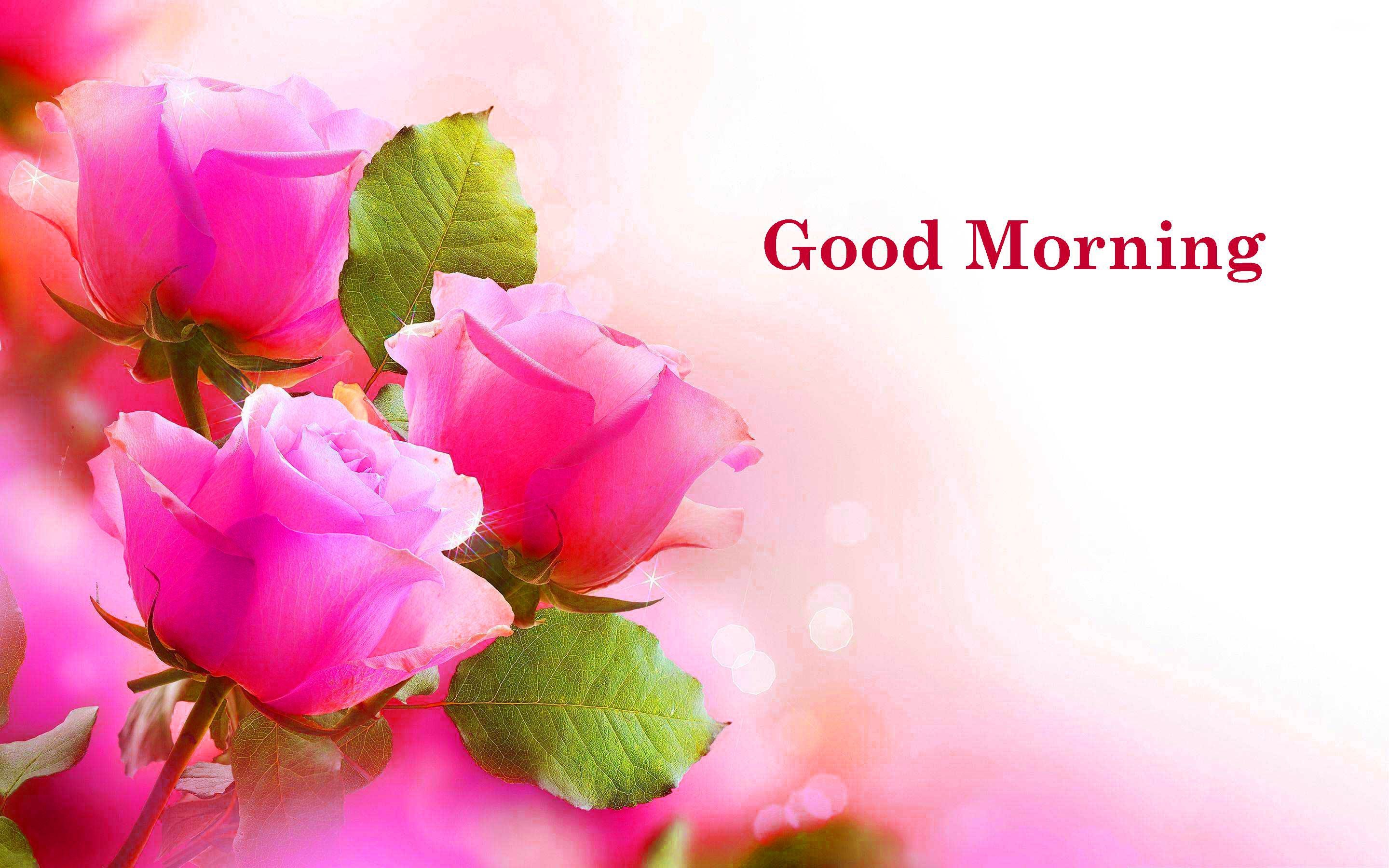 Good Morning Quotes Hd Download