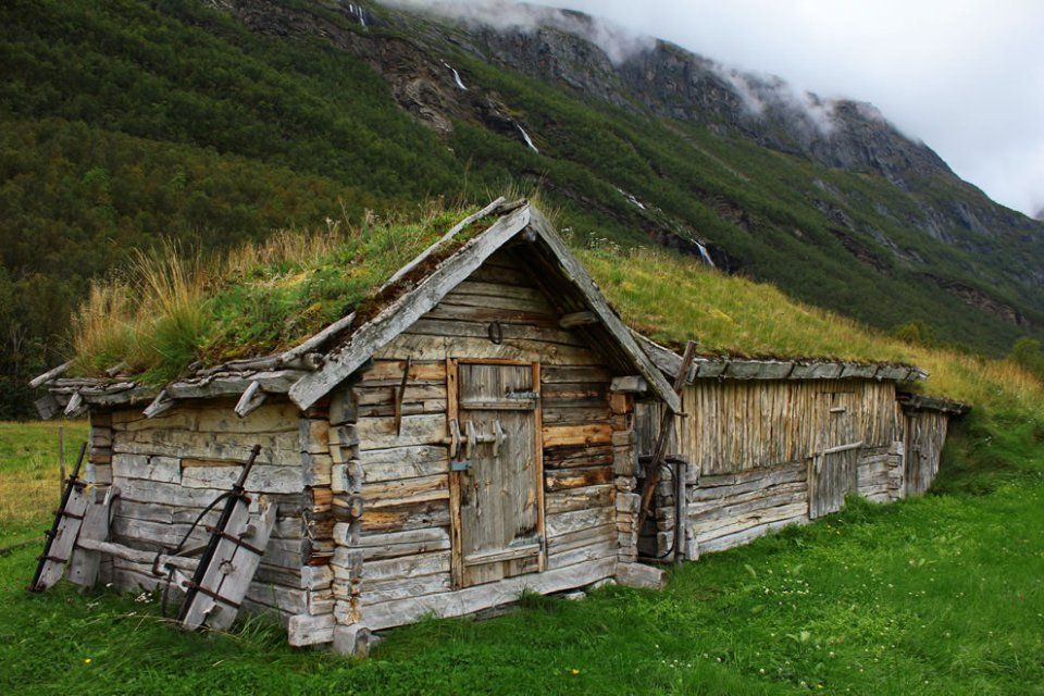 Quelques-unes des plus belles toitures végétales photographiées