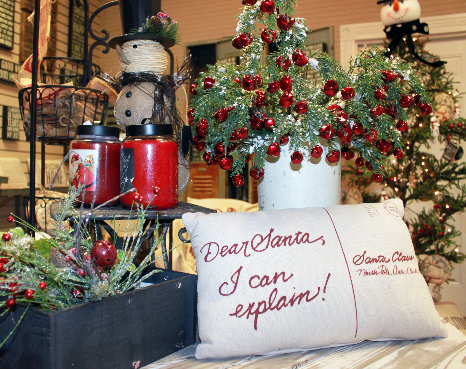 Dear Santa, I Can Explain! Great Decorating Ideas for your home.