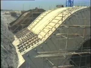 Het besluit om een open kering in de Oosterschelde te bouwen, had een aantal gevolgen.