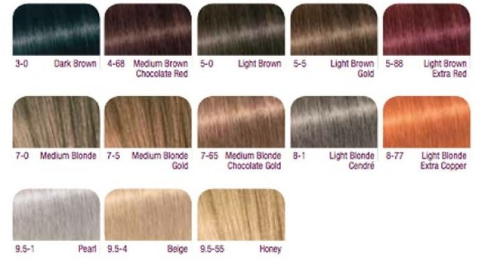 Pin by Anne Winslow on Makeup, Hair & Colour Palette ...