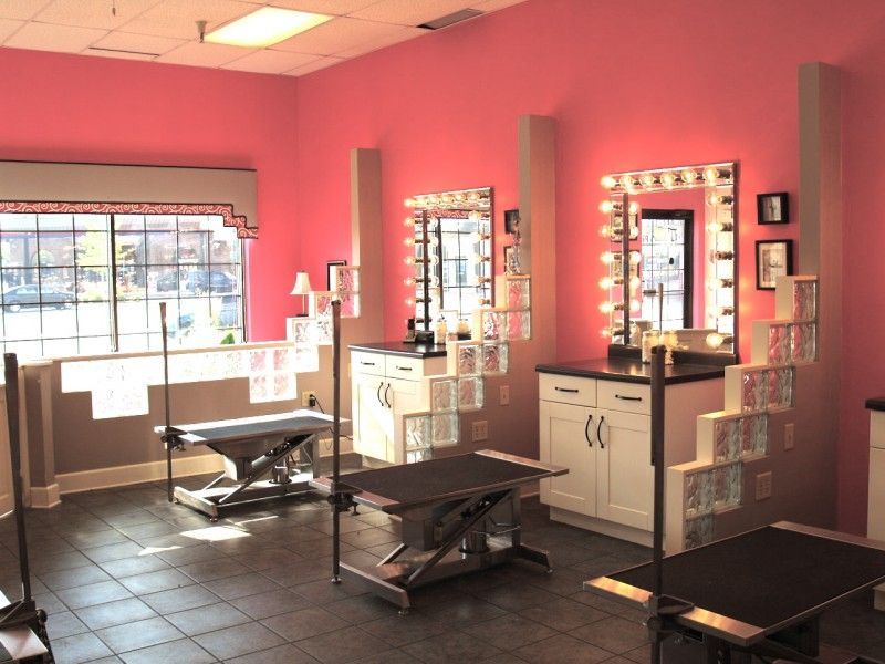 Pet Salon In Woodbury Mn Posh Pooch Pet Salon And Boutique Dog Grooming Salons Dog Grooming Shop Pet Grooming Salon