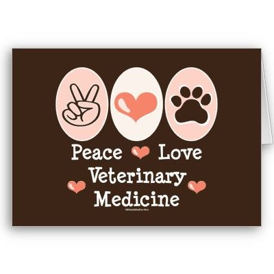 Can't wait to be a vet! | Future Career | Pinterest | To be ...