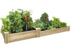 Greenes Cedar Raised Garden Kit, a high quality kit from well known company with discounted price tag. Don't miss it!