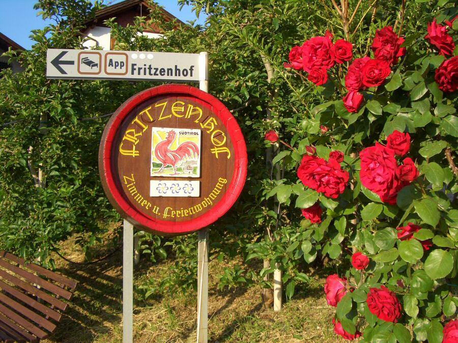 Tramin - Urlaub und Ferien auf dem Bauernhof in Tramin an der Weinstraße im Süden von Südtirol-Roter Hahn - Kalterer See - Urlaub auf dem Bauernhof in Tramin - Ferien