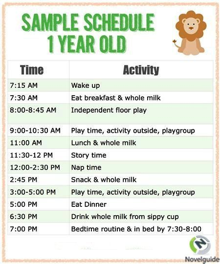 Sample Schedule For One Year Old