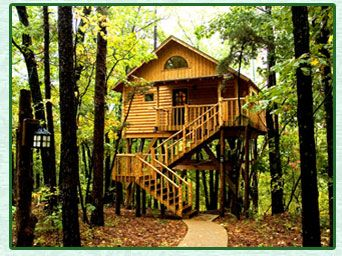 Bungalow Treehouse By Treehousecottages Com Eureka Springs Arkansas Lodging Treehouse Cottages Tree House Treehouse Hotel