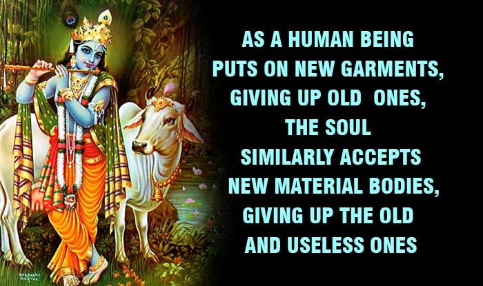 Lord Krishna Quotes Brilliant Related Image  Ancient History  Pinterest  Bhagavad Gita Lord