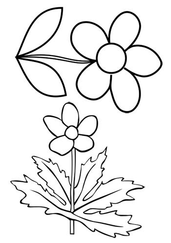 Papierblumen Basteln Mit Kindern Schone Ideen