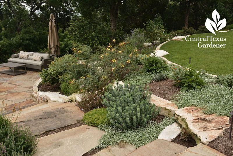 Hill Country Garden Textures Central Texas Gardeners Shade