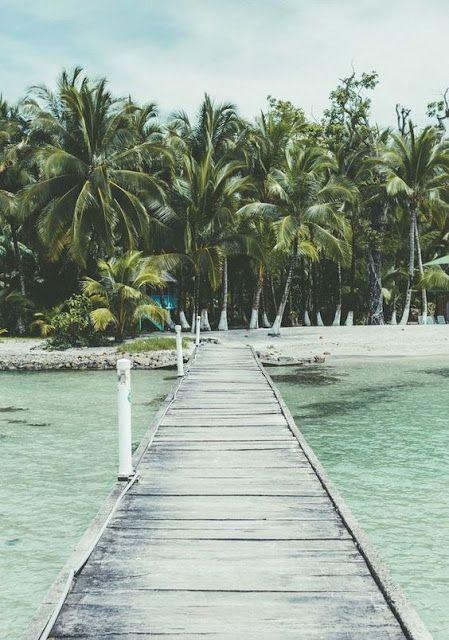 Tendência deco. Tropical | Its Monday But Its Ok!