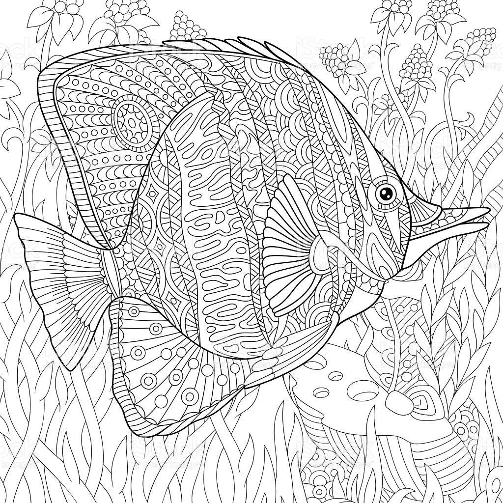 Hand Drawn Stylized Cartoon Butterfly Fish Swimming Among Seaweed Ausmalbilder Ausmalen Malvorlagen