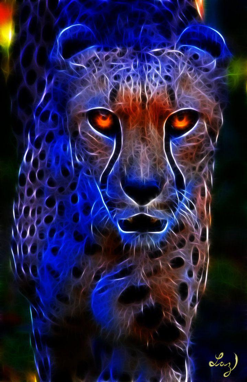 Cheetah With Images Big Cats Art Tiger Art Cat Art